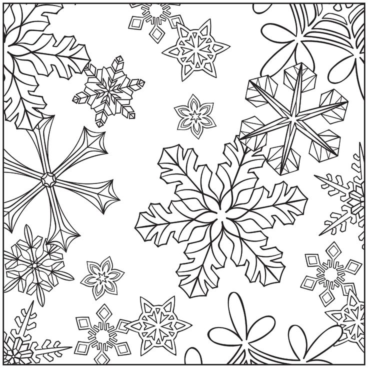 736x736 Winter Coloring Pages For Adults