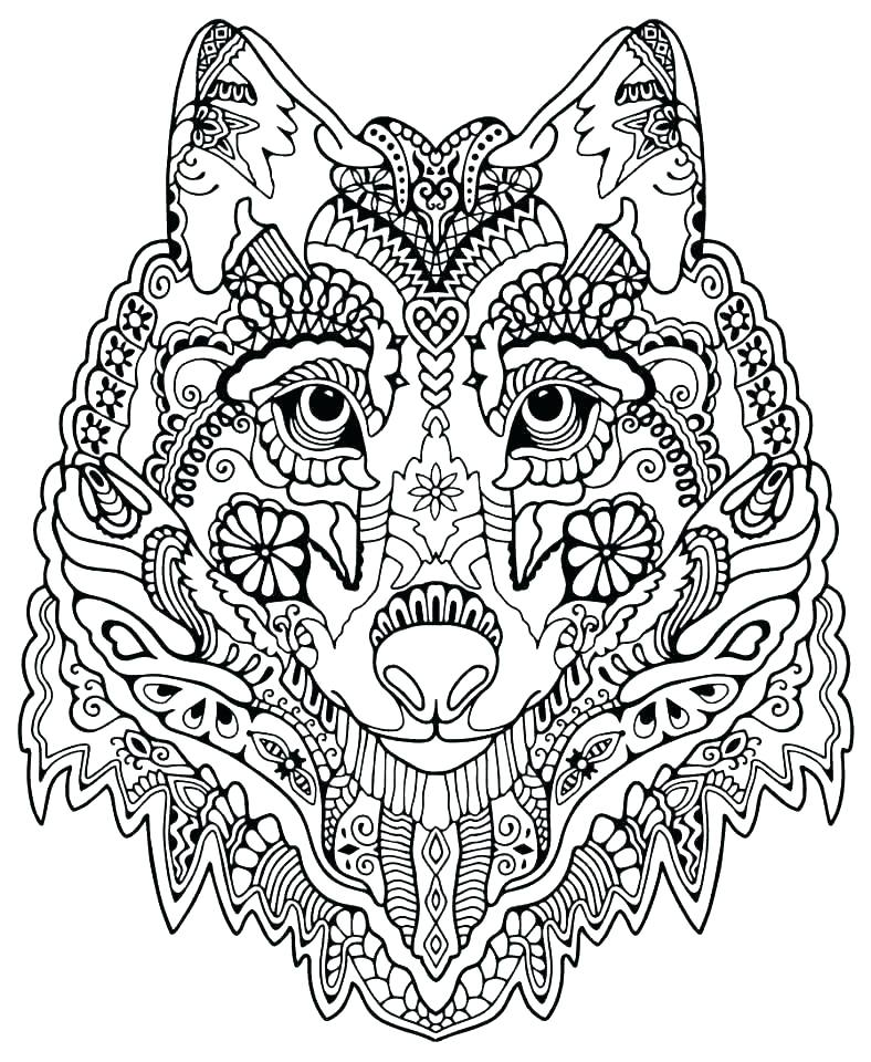 788x960 Advanced Flower Coloring Pages Advanced Flower Coloring Pages Free