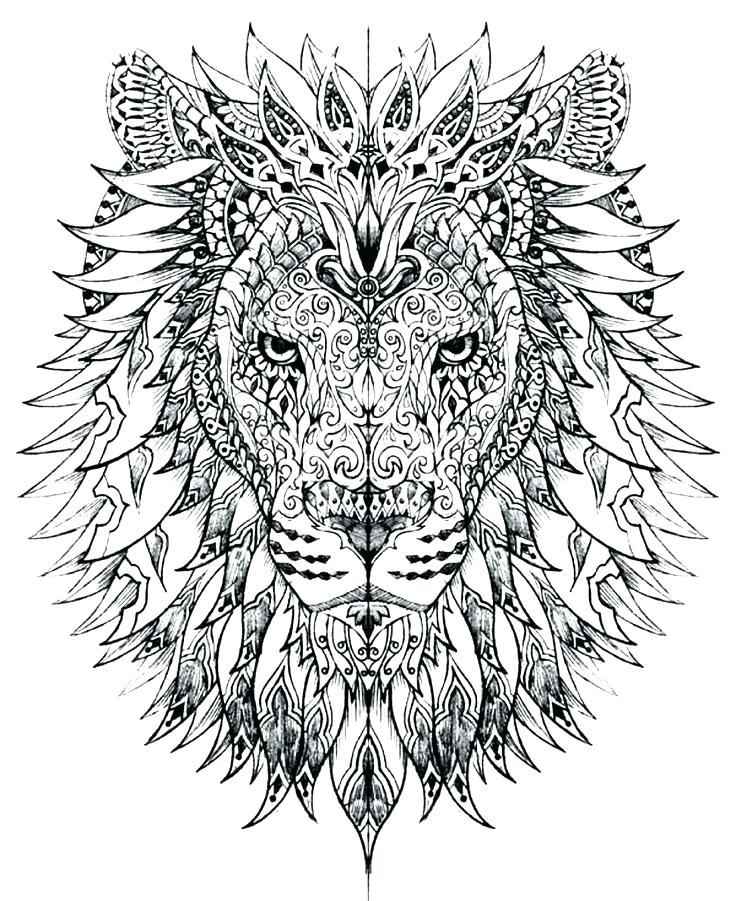 736x901 Advanced Coloring Pages Advanced Animal Coloring Pages Adult