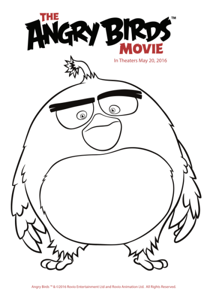 picture regarding Angry Birds Printable Faces titled Totally free Offended Birds Coloring Webpages at  No cost