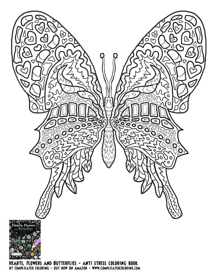 711x920 Detailed Butterfly Coloring Pages Complicated Coloring Books