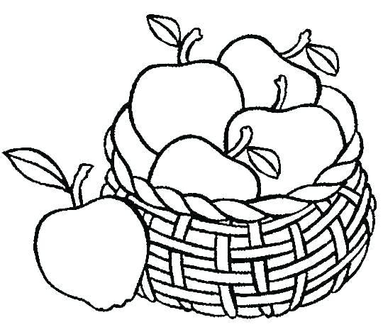 540x461 Fruit Color Pages Fruits For Coloring Fruit Color Pages Fruit