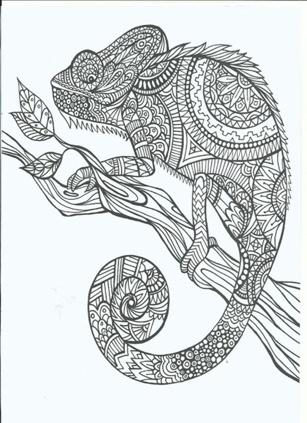 600x825 Free Printable Coloring Pages For Adults More Designs