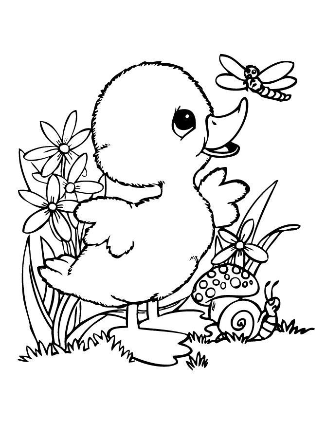 670x867 Spring Baby Animals Coloring Pages Color Bros