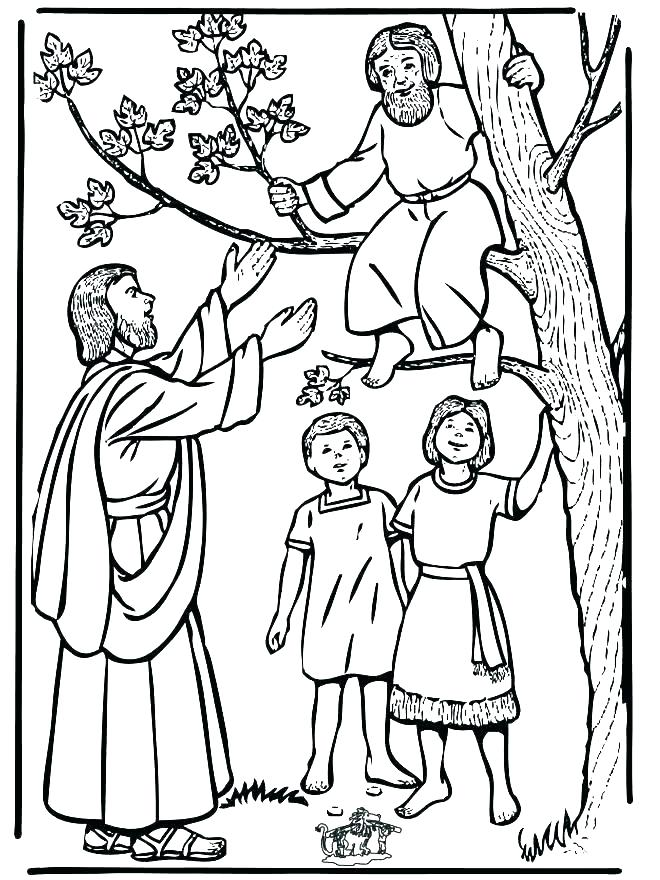 660x880 Biblical Coloring Pages For Kids Free Bible School Coloring Pages