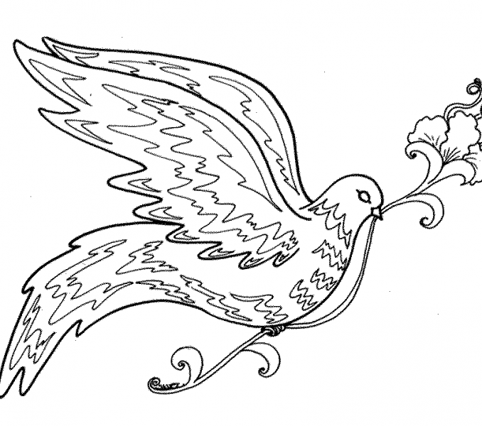 678x600 Bird Coloring Pages For Adults Coloring Page