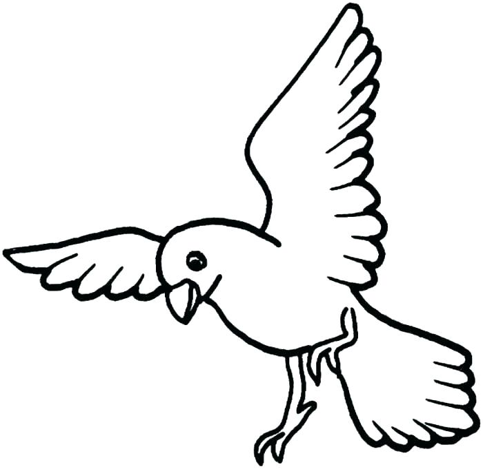 700x681 Free Bird Coloring Pages Free Bird Coloring Pages Printable Bird