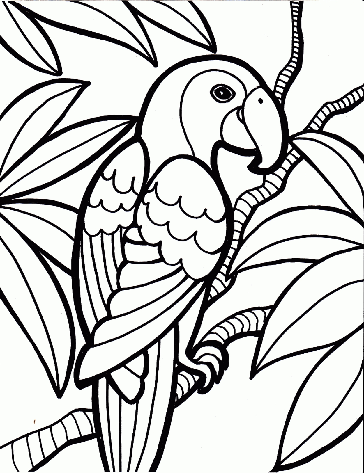 1250x1626 Awesome Bird Coloring Page Design Printable Coloring Sheet
