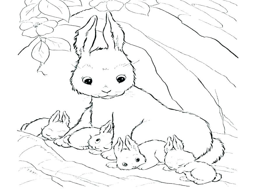Free Bunny Coloring Pages at GetDrawings.com | Free for personal use ...