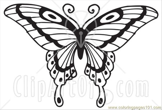 Free Butterfly Coloring Pages at GetDrawings.com | Free for personal ...