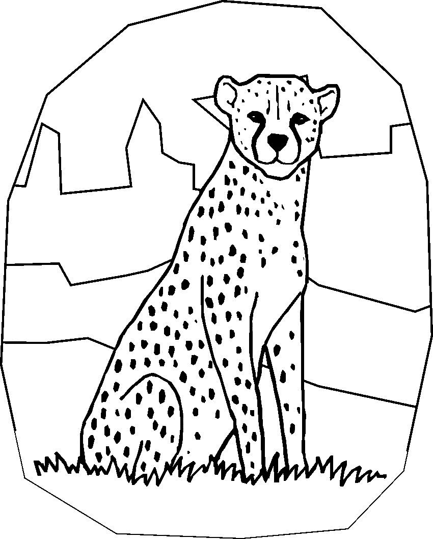 850x1058 Free Printable Cheetah Coloring Pages For Kids