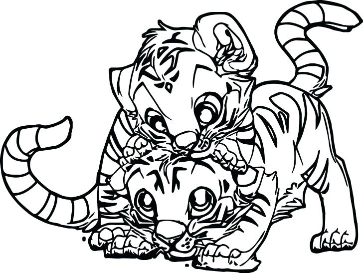 728x547 Printable Baby Cheetah Coloring Pages Flowers Roses Animals Free