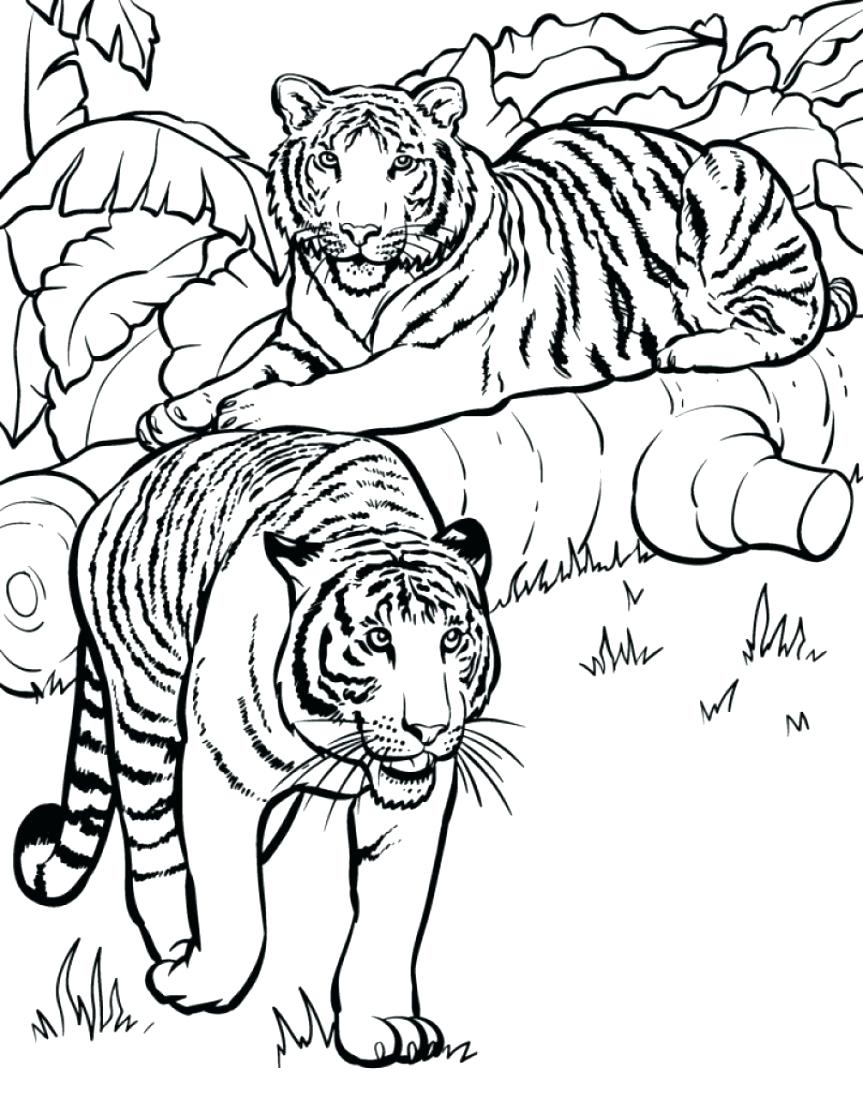 863x1098 Coloring Pages Cheetah Coloring Pages Tiger Printable Baby