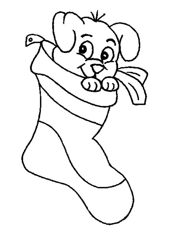 600x798 A Cute Little Puppy On Christmas Stocking Coloring Page