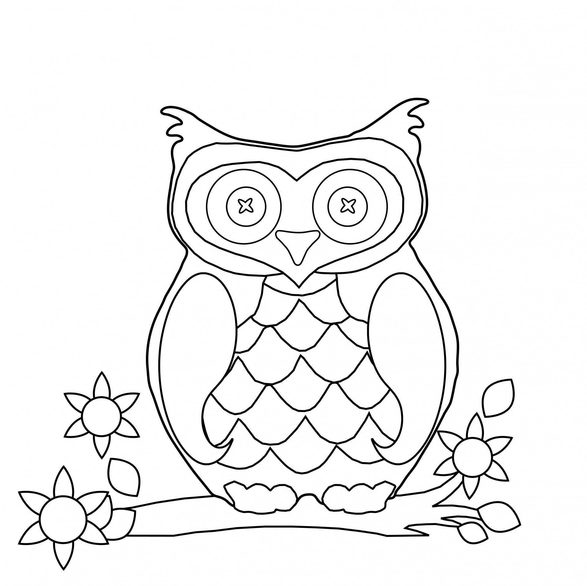 1919x1917 Owl Coloring Page Clipart Free Stock Photo