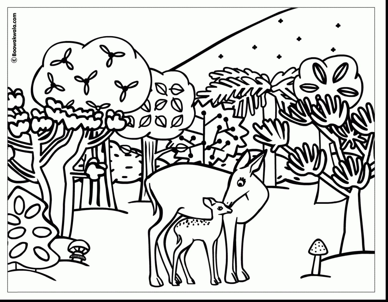 Free Coloring Pages Animals Realistic at GetDrawings ...
