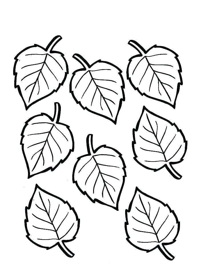 728x969 Free Coloring Pages For Fall Free Fall Coloring Pages Printable