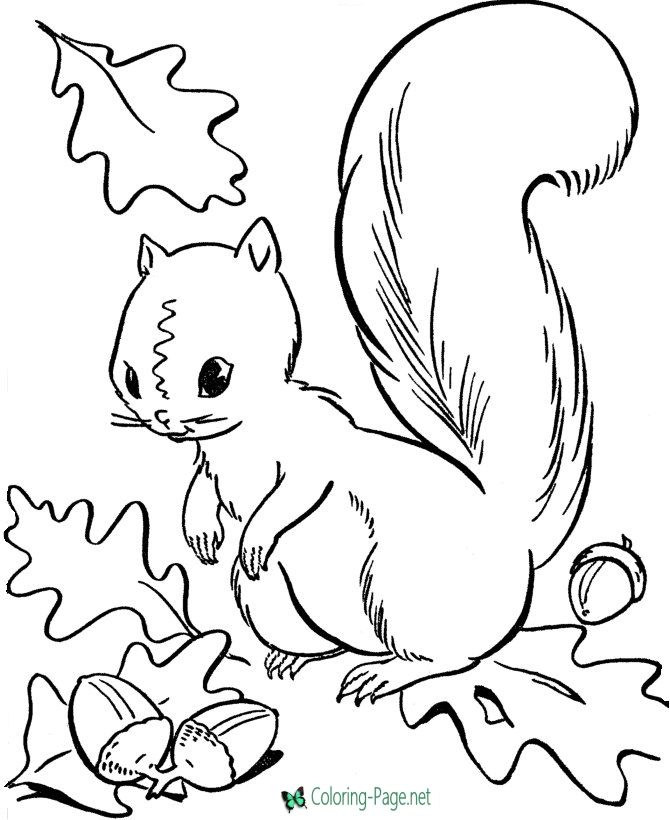 670x820 Autumn Coloring Pages Coloring Pages Autumn