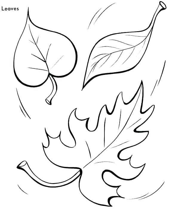 600x734 Fall Themed Coloring Pages