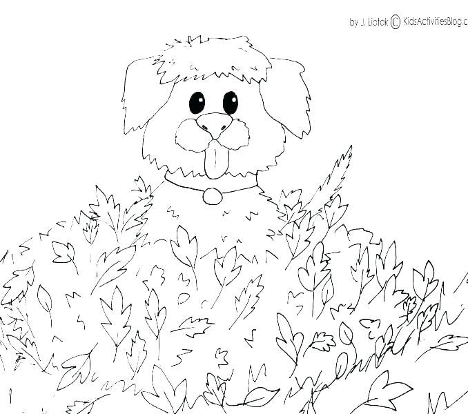 678x600 Coloring Pages For Fall Fall Coloring Pages Fall Coloring Pages