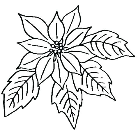 474x451 Coloring Pages Flowers And Butterflies Coloring Pages