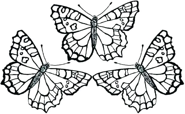618x380 Flowers Printable Coloring Pages Free Coloring Pages Flowers