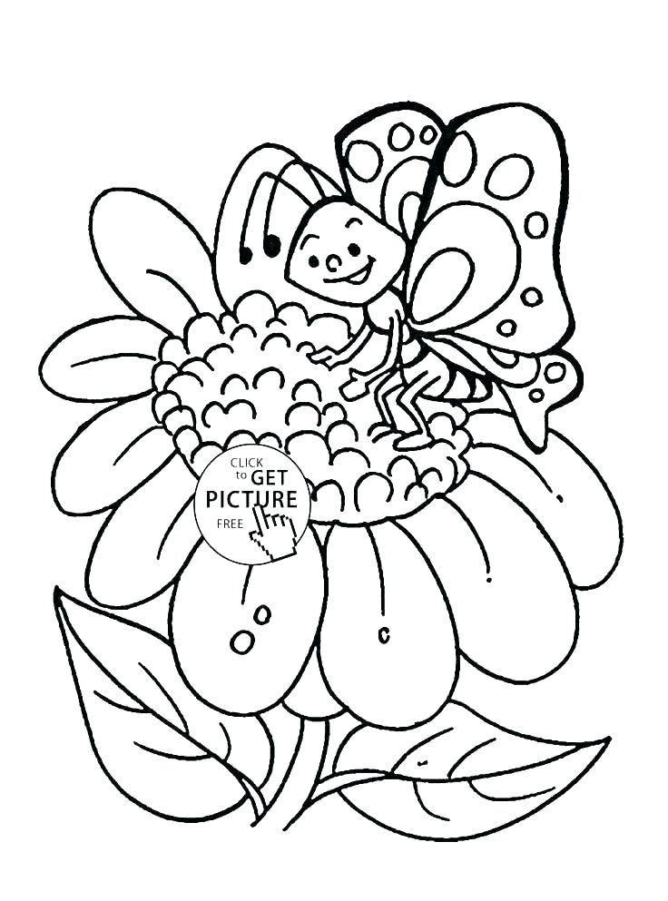 736x993 Free Coloring Pages Of Flowers And Butterflies Adult Coloring