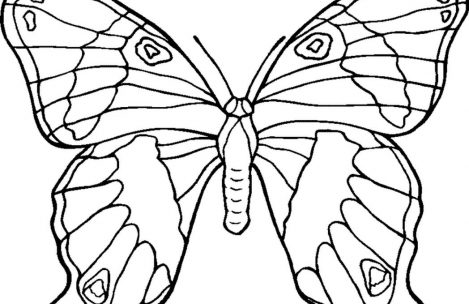 469x304 Free Coloring Pages Flowers And Butterflies Just Colorings
