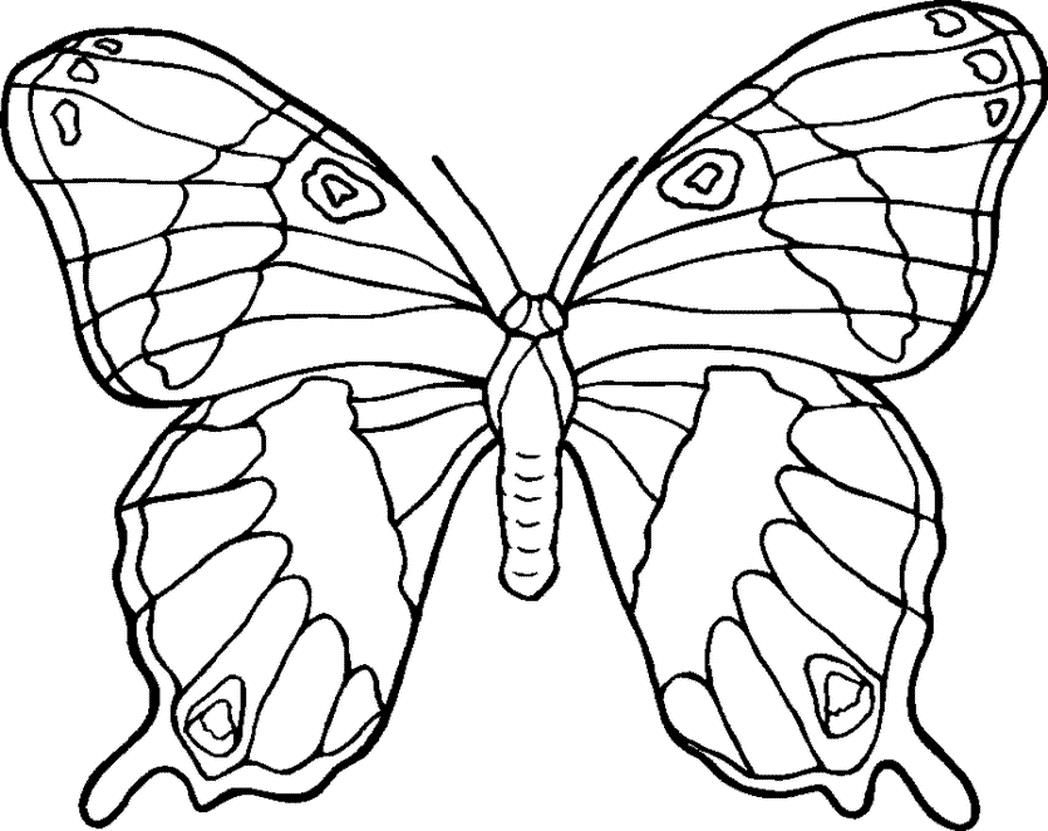 1048x831 Coloring Pages Flowers And Butterflies