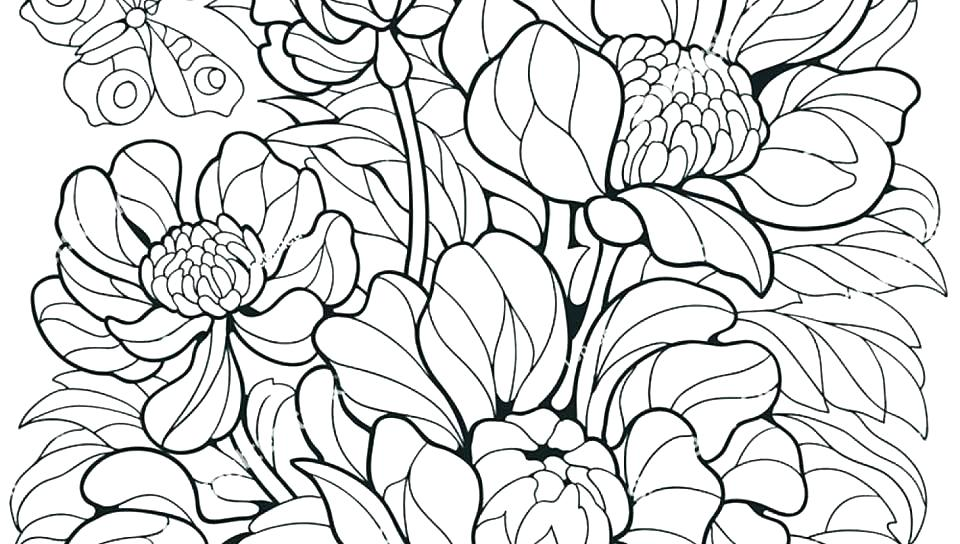 960x544 Butterfly Printable Coloring Pages Free Coloring Pages Flowers