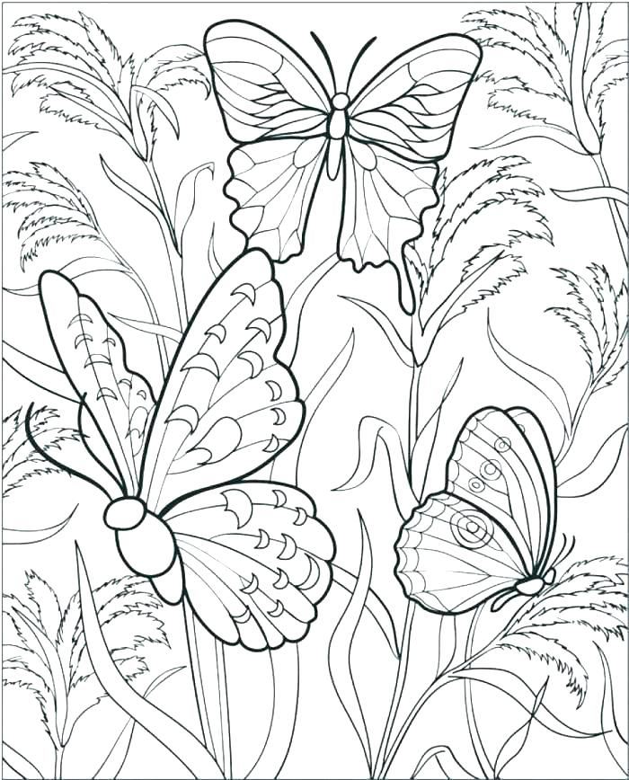700x868 Coloring Pages Flowers Coloring Pages Flowers And Butterflies