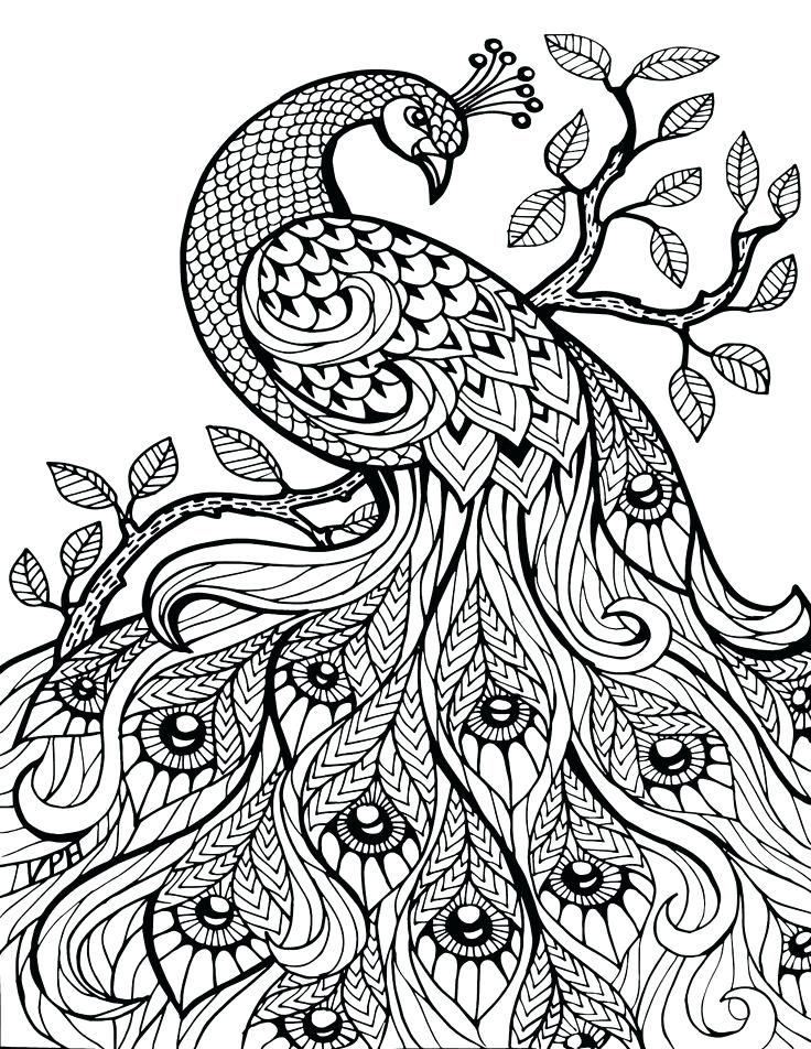 736x952 Free Printable Coloring Pages For Adults Only Image Art Free
