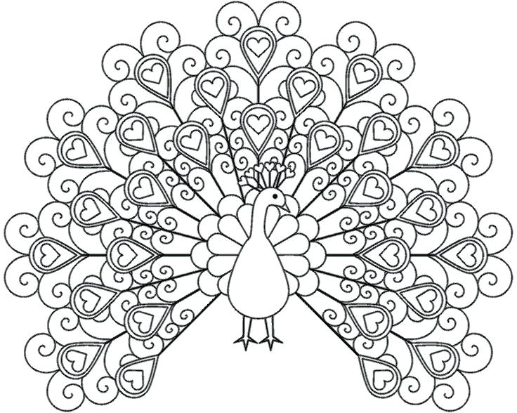 736x588 Coloring Pages Free Printable Coloring Pages Adults Only
