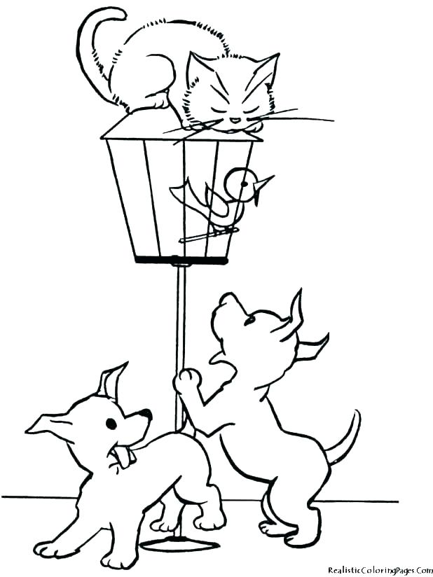 618x824 Cat Dog Coloring Pages Dog Coloring Pages Free Cat Dog Cat