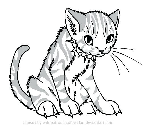 517x447 Best Warrior Cat Coloring Pages Images On Warrior Free Coloring