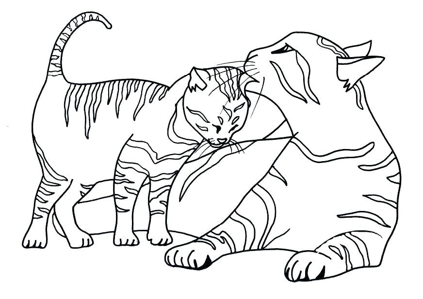 872x618 Cat Coloring Pages Cat Coloring Pictures Free Coloring Pages