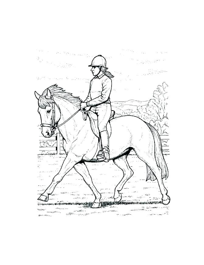 Free Coloring Pages Of Horses To Print At Getdrawings Com Free For