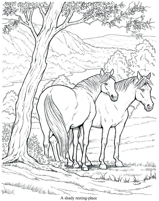 607x770 Horse Jumping Coloring Pages