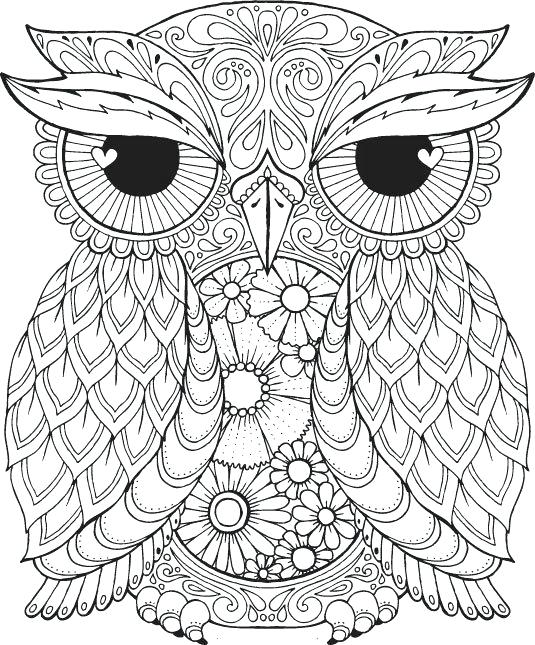 535x645 Free Coloring Pages Pdf Frozen Pictures To Print Download Print