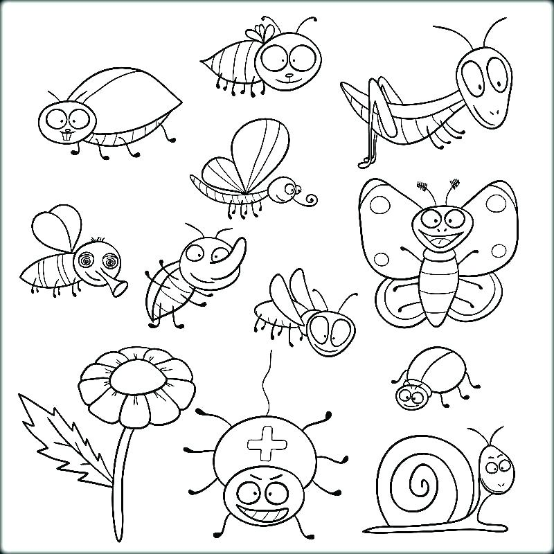 800x800 Coloring Bugs Insect Coloring Pages Insect Coloring Pages Online