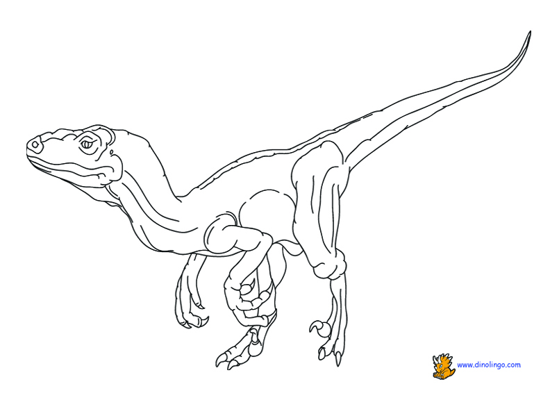 792x576 Dinosaur Coloring Pages Dino Lingo Blog