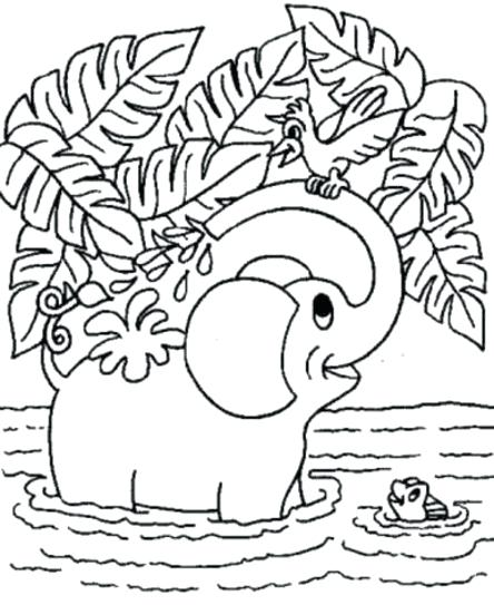 444x543 Animal Coloring Pages Free Cute Coloring Pages Of Baby Animals