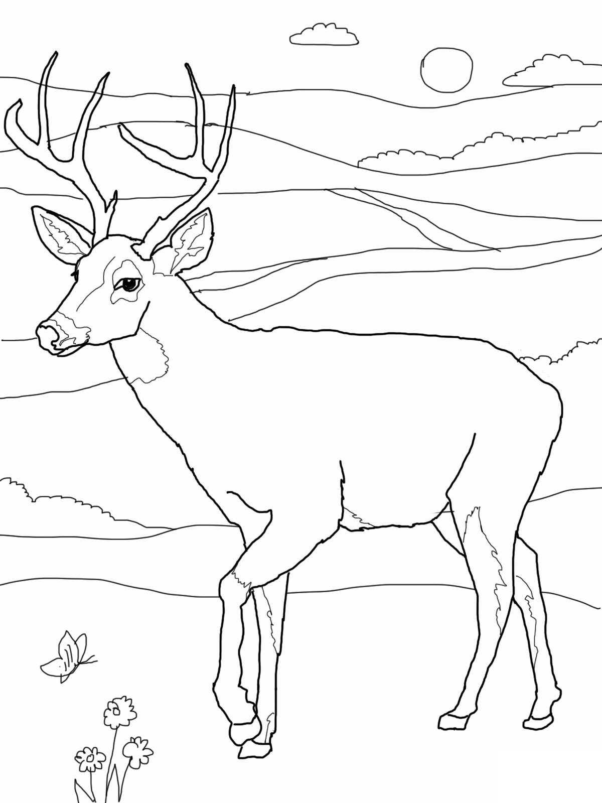 1200x1600 Deer Coloring Page New Free Coloring Pages Of Deer Buck Logo