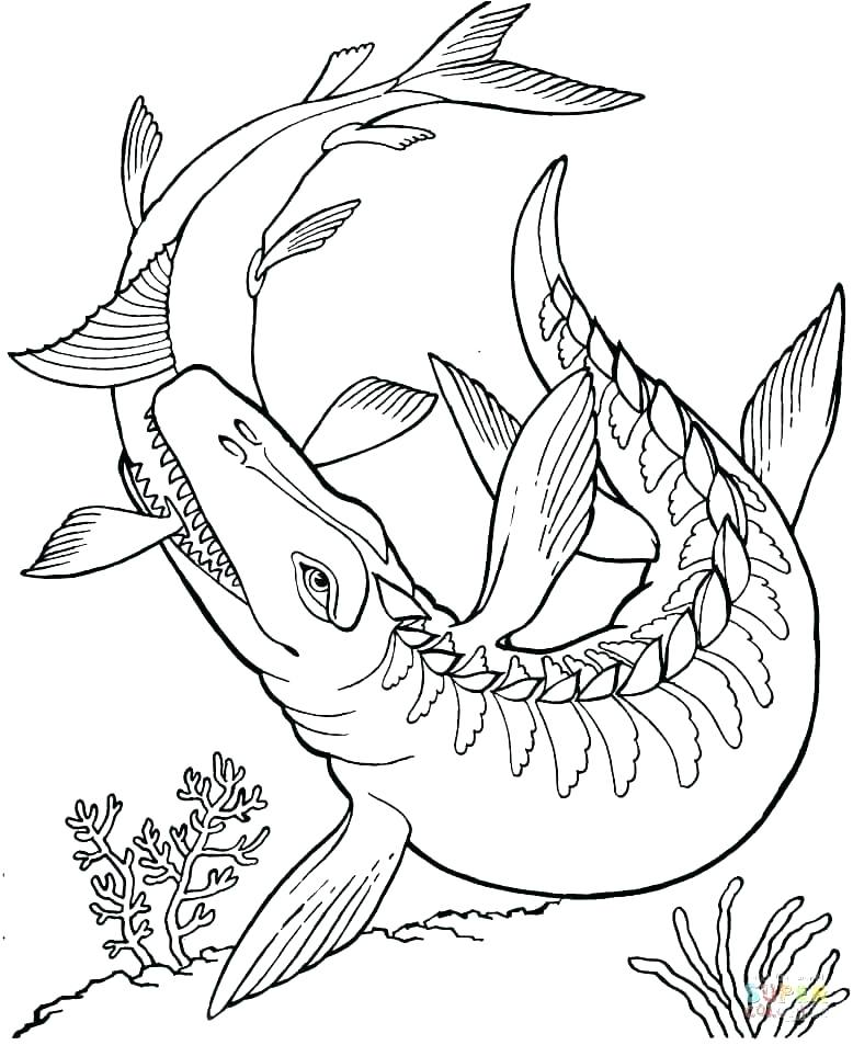 778x953 Dinosaur Coloring Pages Pdf Good Dinosaur Coloring Pages For Kids