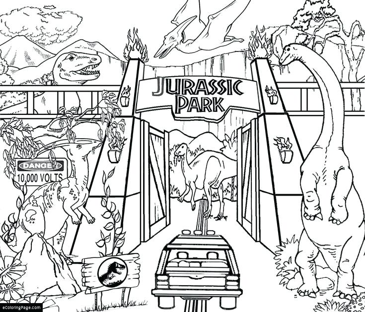 735x630 Dinosaurs Coloring Page Dinosaurs Coloring Pages Free For Kids