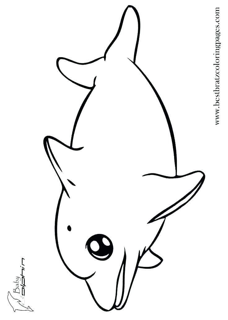 Free Dolphin Coloring Pages At Getdrawings Com Free For Personal