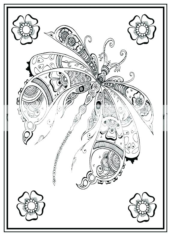 Free Dragonfly Coloring Pages At Getdrawings Com Free For