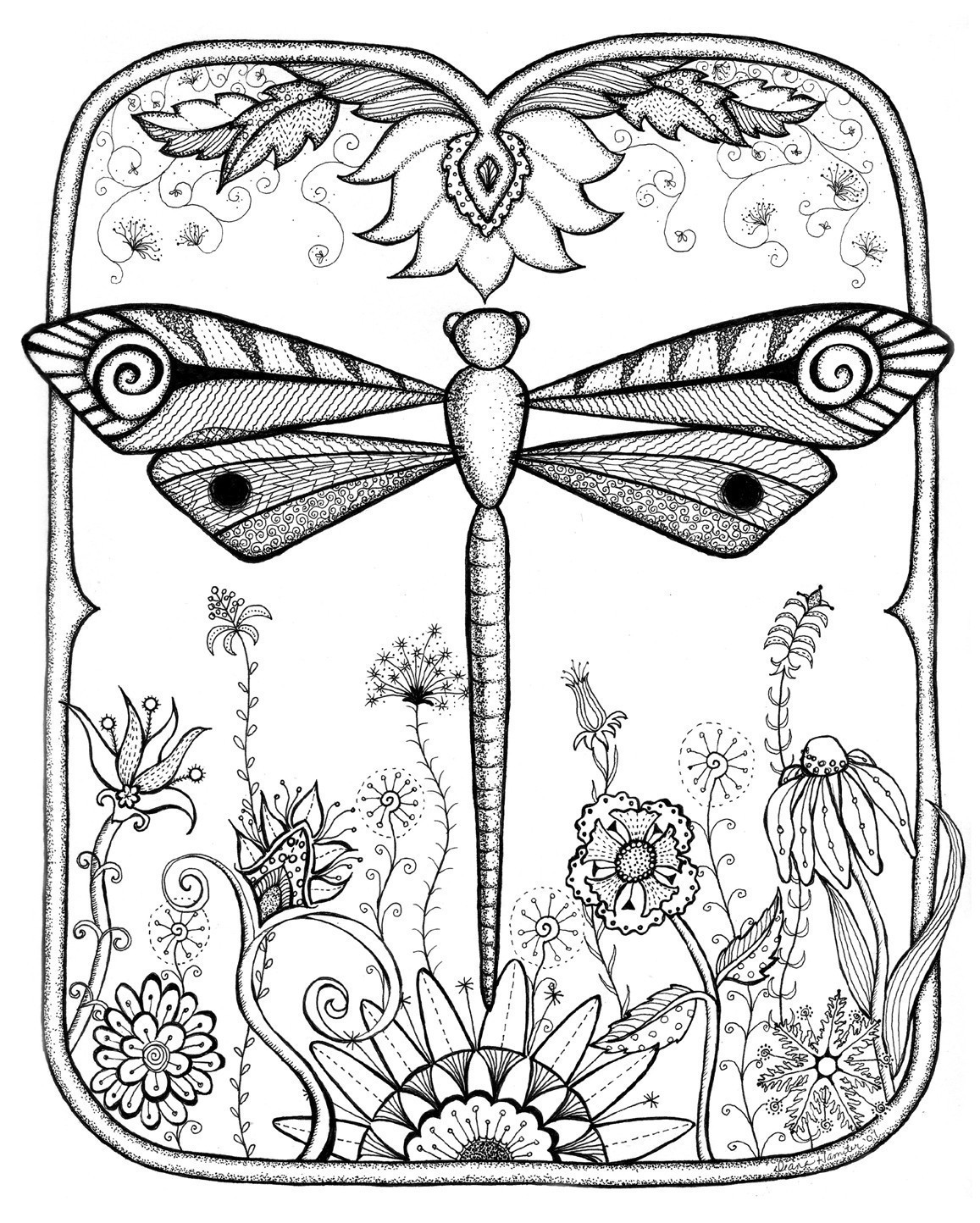 Free Dragonfly Coloring Pages At Getdrawings Com Free For Personal