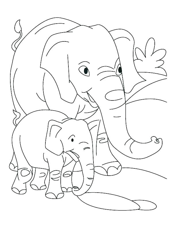 612x792 Elephant Color Pages Elephant And Coloring Pages And Elephant