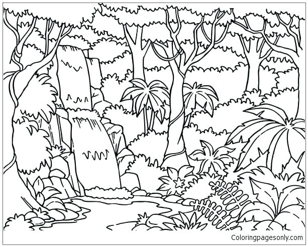 613x492 Forest Coloring Page Forest Coloring Page Flowers Coloring Pages